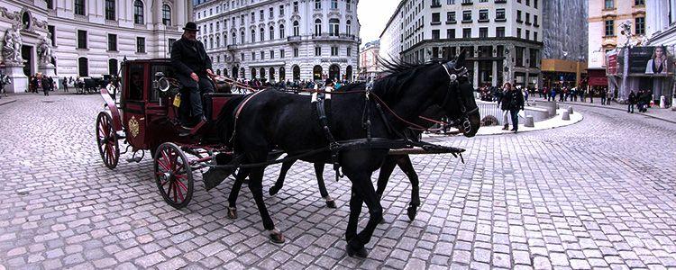 В Вене можно прокатиться на фиакре